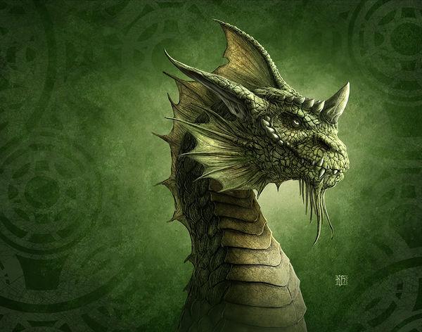 green dragon by kerem beyit decalgirl