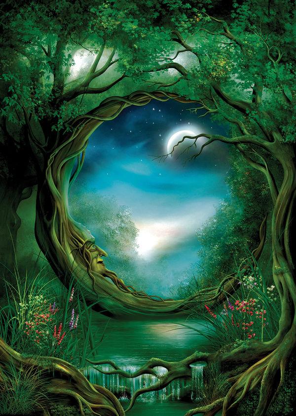 Moon Tree By John E Shannon