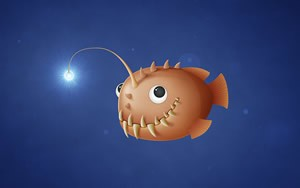 Little Anglerfish