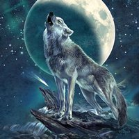 Howling Moon Soloist