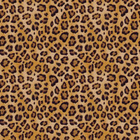 Magic Trackpad Skin - Leopard Spots