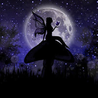 Moonlit Fairy
