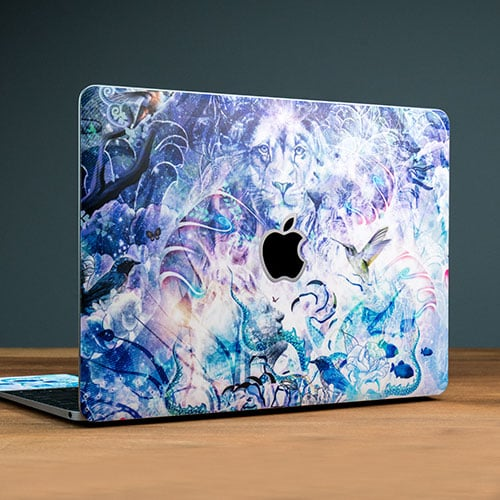 Skins for Your MacBook