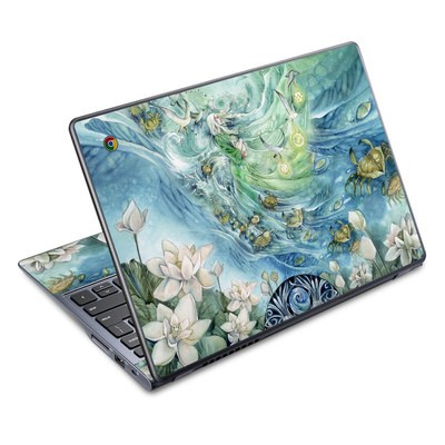 Acer Chromebook C720 Skin - Cancer