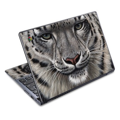 Acer Chromebook C720 Skin - Call of the Wild
