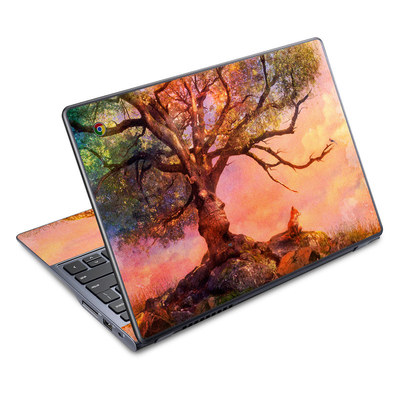 Acer Chromebook C720 Skin - Fox Sunset