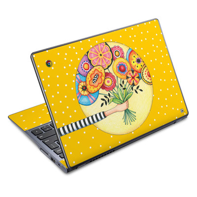 Acer Chromebook C720 Skin - Giving