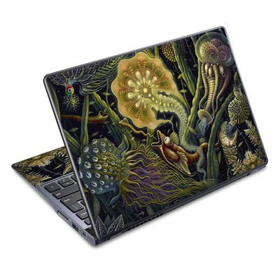 Acer Chromebook C720 Skin - Light Creatures