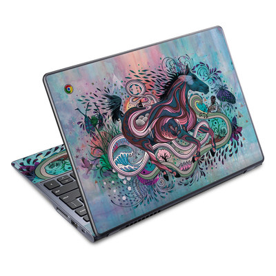 Acer Chromebook C720 Skin - Poetry in Motion