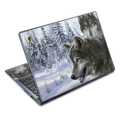 Acer Chromebook C720 Skin - Snow Wolves