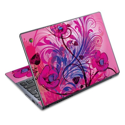 Acer Chromebook C720 Skin - Spring Breeze