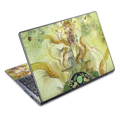 Acer Chromebook C720 Skin - Virgo