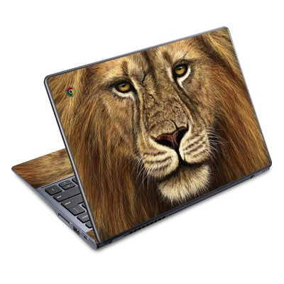Acer Chromebook C720 Skin - Warrior