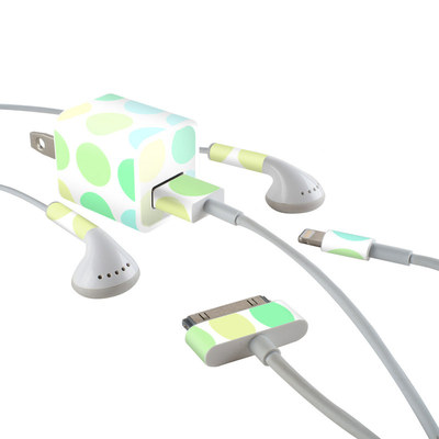 Apple iPhone Charge Kit Skin - Big Dots Mint