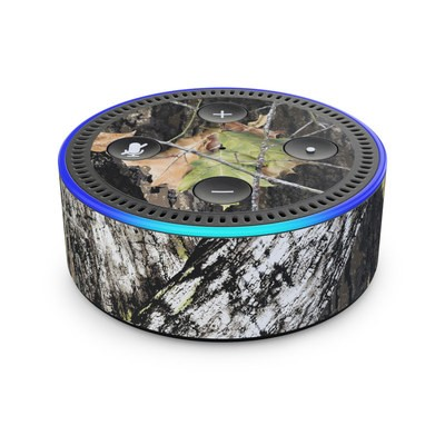Amazon Echo Dot 2nd Gen Skin - Break-Up