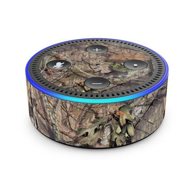 Amazon Echo Dot 2nd Gen Skin - Break-Up Country