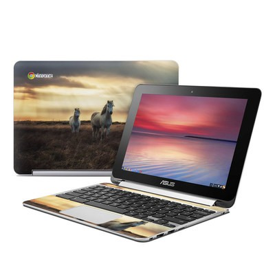 Asus Flip Chromebook Skin - Hornless Unicorns