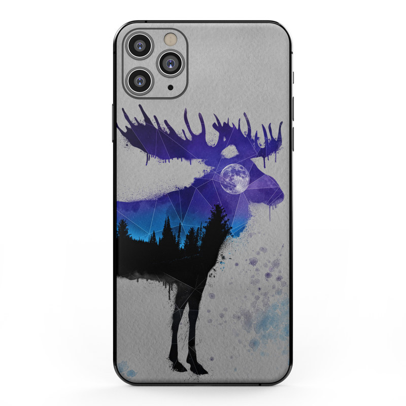 Koi pond - night iPhone 11 case