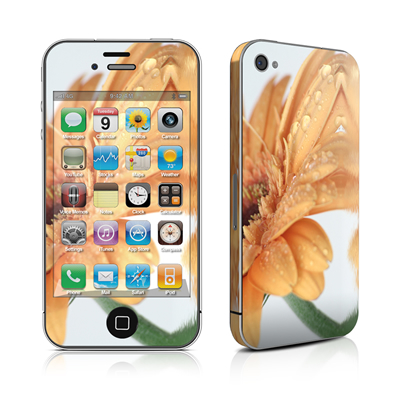 iPhone 4 Skin - Golden Gerbera
