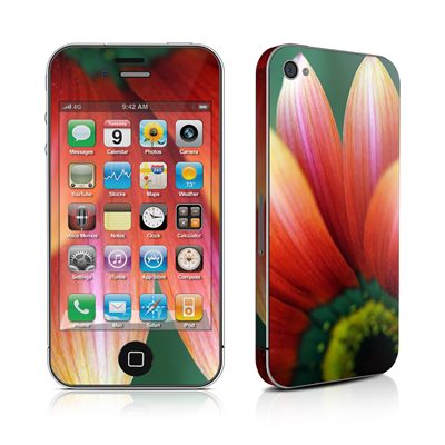 iPhone 4 Skin - Scarlet Gerbera