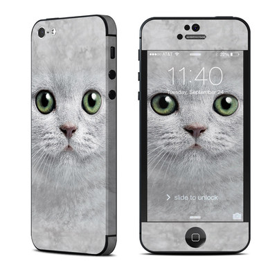 Apple iPhone 5 Skin - Grey Kitty