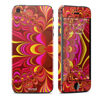 Apple iPhone 5S Skin - Cyclotomic Contours
