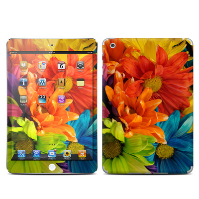 Apple iPad Mini Skin - Colours