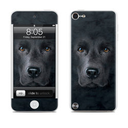 iPod Touch 5G Skin - Black Lab