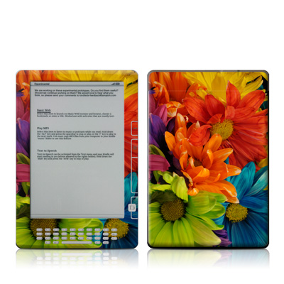 Kindle DX Skin - Colours