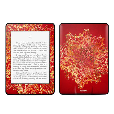 Amazon Kindle Paperwhite Skin - Dodecahedron Cage