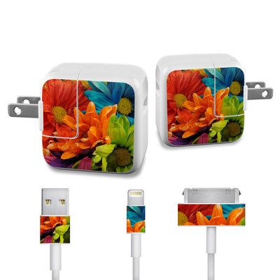Apple iPad Charge Kit Skin - Colours
