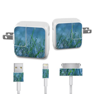 Apple iPad Charge Kit Skin - Dew