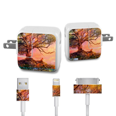 Apple iPad Charge Kit Skin - Fox Sunset