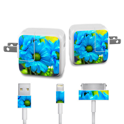 Apple iPad Charge Kit Skin - In Sympathy