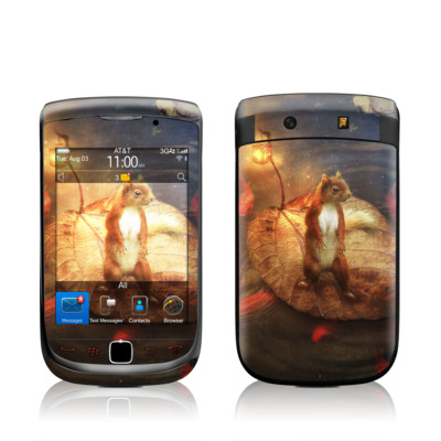 BlackBerry Torch Skin - Columbus