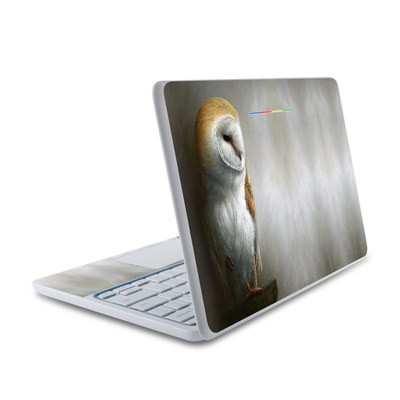 HP Chromebook 11 Skin - Barn Owl