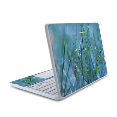 HP Chromebook 11 Skin - Dew