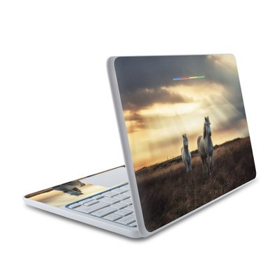 HP Chromebook 11 Skin - Hornless Unicorns