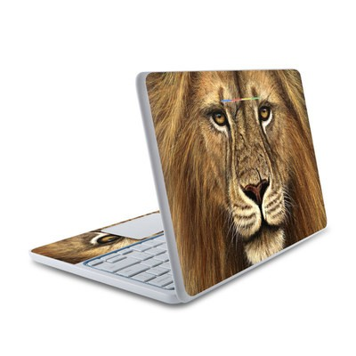 HP Chromebook 11 Skin - Warrior