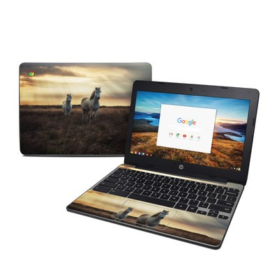 HP Chromebook 11 G5 Skin - Hornless Unicorns