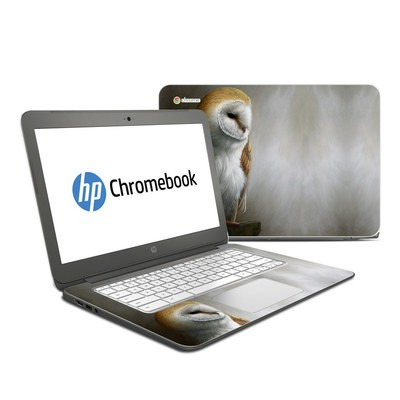 HP Chromebook 14 Skin - Barn Owl