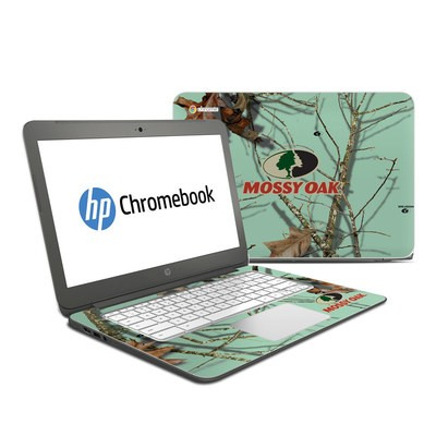 HP Chromebook 14 G4 Skin - Break-Up Lifestyles Equinox