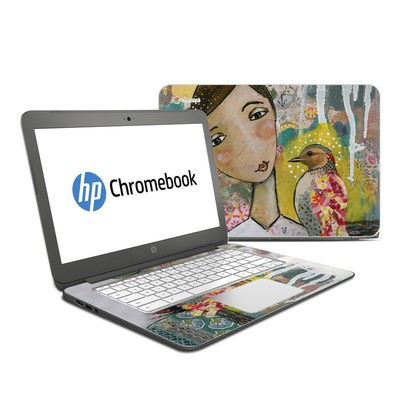 HP Chromebook 14 Skin - Seeker of Hope