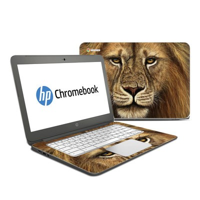 HP Chromebook 14 G4 Skin - Warrior