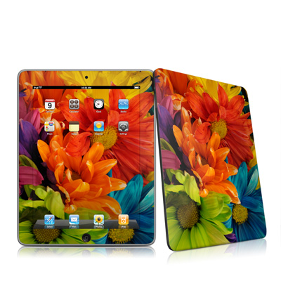 iPad Skin - Colours