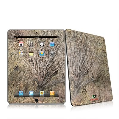 iPad Skin - Brush