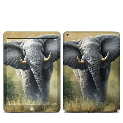Apple iPad 5th Gen Skin - Right of Way