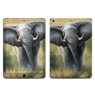 Apple iPad Air Skin - Right of Way