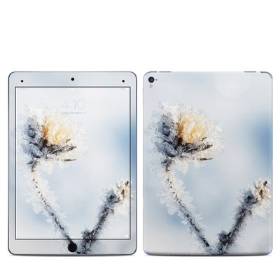 Apple iPad Pro 9.7 Skin - Crystallized