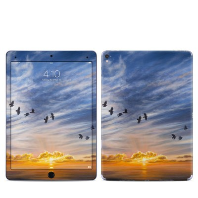 Apple iPad Pro 9.7 Skin - Equinox